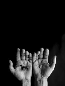 Dva dlana u kojima se nalaze pretpovijesni nalazi
