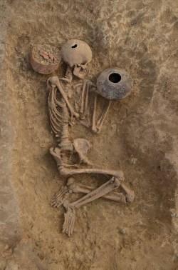 AMZ – Izložba 'Život i smrt u pretpovijesti' (PRESS)